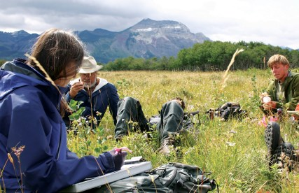 Surveys of aspen growth in Waterton are at the heart of Eisenberg's research in trophic cascades and the impacts of fire and wolves. Photo by Brian Schott