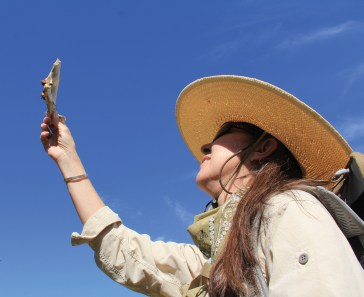 Eisenberg studies the scapula of a young elk at a wolf rendezvous site in Glacier National Park