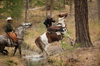Leon Wieder and his horse Mamet help his dad train a horse to cross an irrigation ditch. The two were helping Wieder's cousins and family bring down cows from the summer range. Leon Wieder rode Mamet across the state of Montana twice to raise money for his non-profit Spur the Cancer Out of Montana.