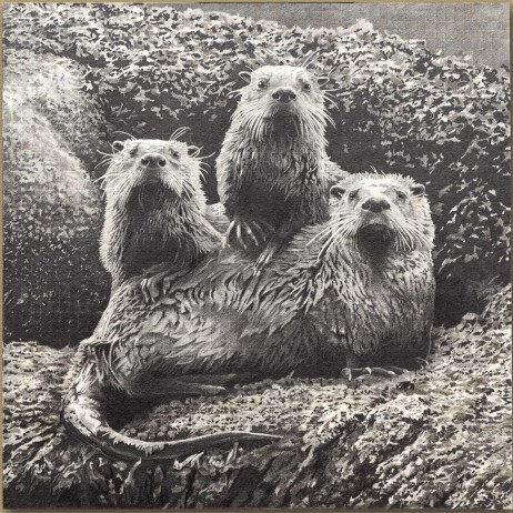 """Otters at Echo Bay"" 