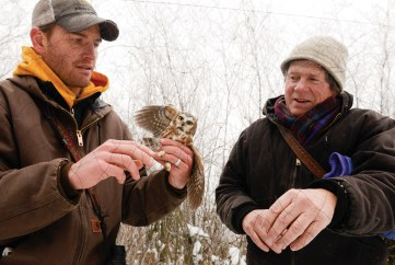 Denver Holt, right, and fellow owl researcher Matt Larson untangle a northern saw-whet owl that was caught in the net when researchers flushed long-eared owls near Missoula.