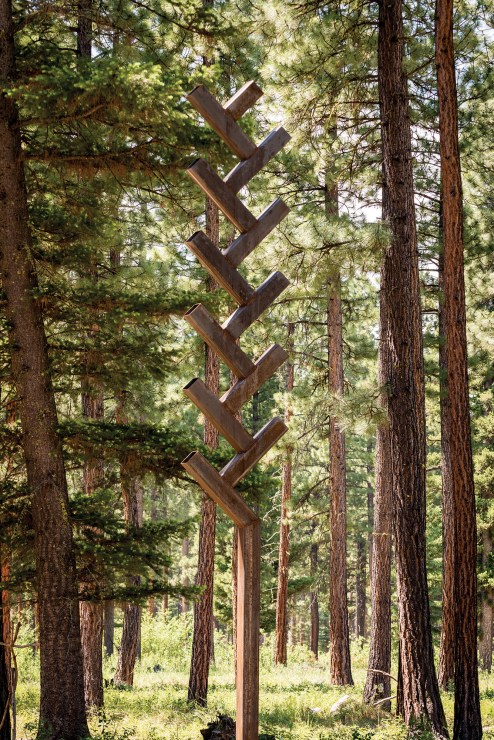 """""""Montana Line Drawing"""" 