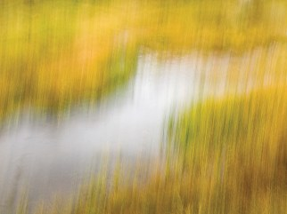 """Fall Color 11"" 