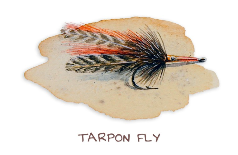 tarpon-fly_web.jpg