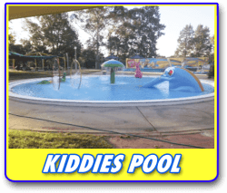 kiddies pool