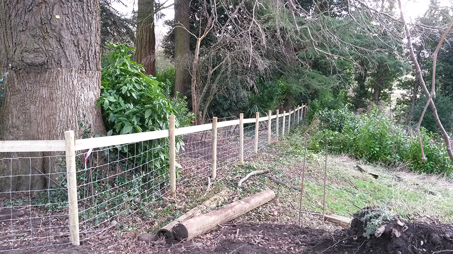 Livestock Fencing and Gate