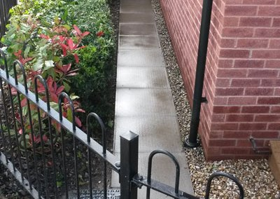 Pressure wash hedge trim