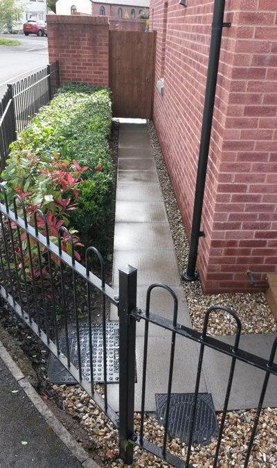 Pressure wash hedge trim