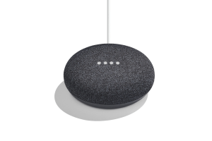 end a call on the Google Home Mini