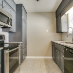 Arlington cat hoarder house kitchen after