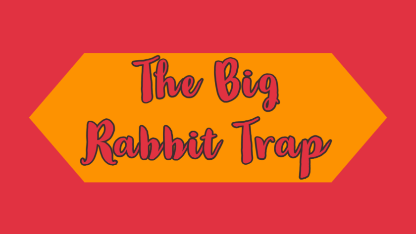 Featured image for the big rabbit trap