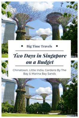 Two Days in Singapore on a Budget Pin
