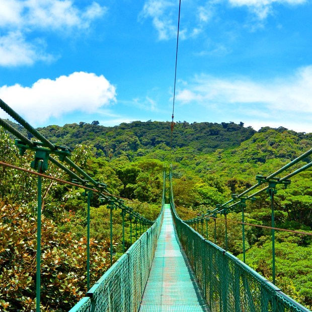 Hanging Bridges in Monteverde, Costa Rica