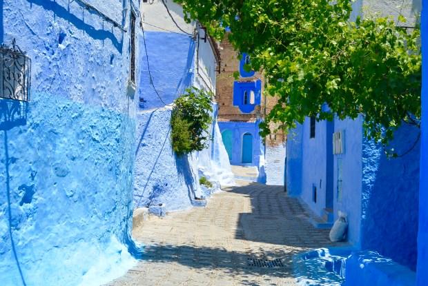 Blue Alleyway in Chefchaouen
