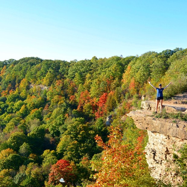 Fall Colours at Dundas Peak