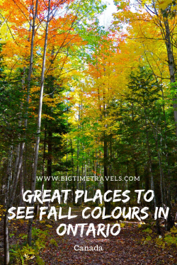 Fall Colours in Ontario Pin