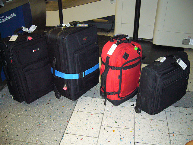 Various Travel Bags