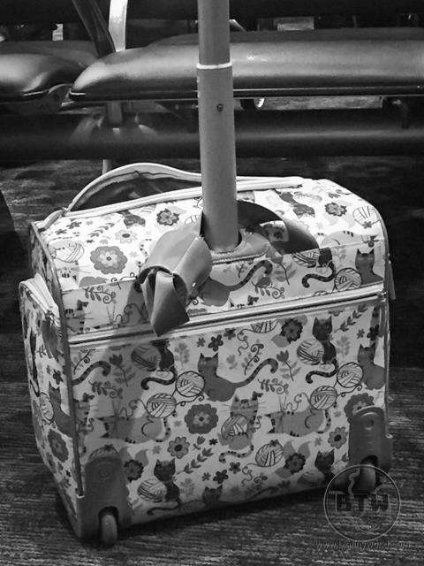 A small rolling bag with a playful cat pattern | BIG tiny World Travel