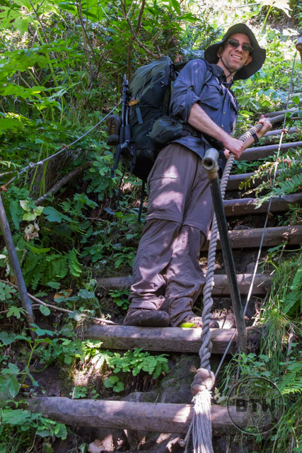 Aaron climbing a ladder up a green hillside in Washington's Olympic National Park | BIG tiny World Travel