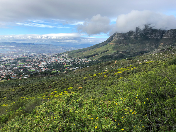 table-mountain-28