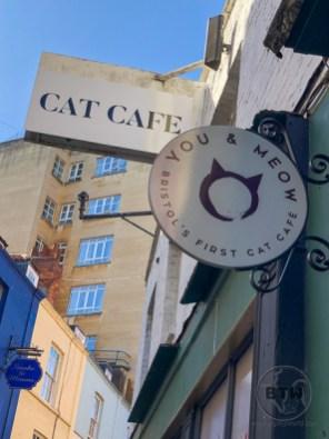 cat-cafe-1