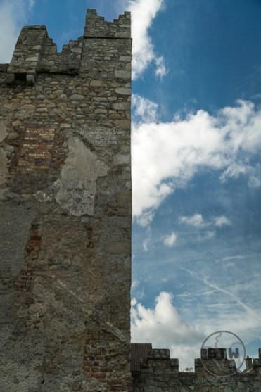 monkstown-castle-1