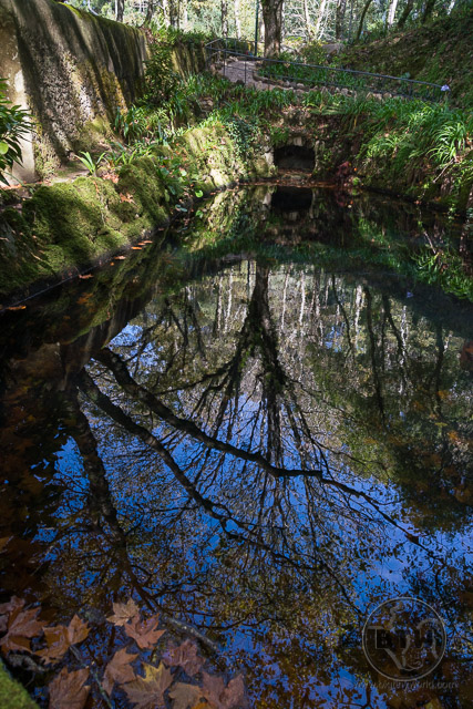 Pena Palace Gardens pond reflections