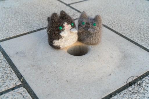 Travel cats sitting at a hole of the Sea Organ in Zadar, Croatia