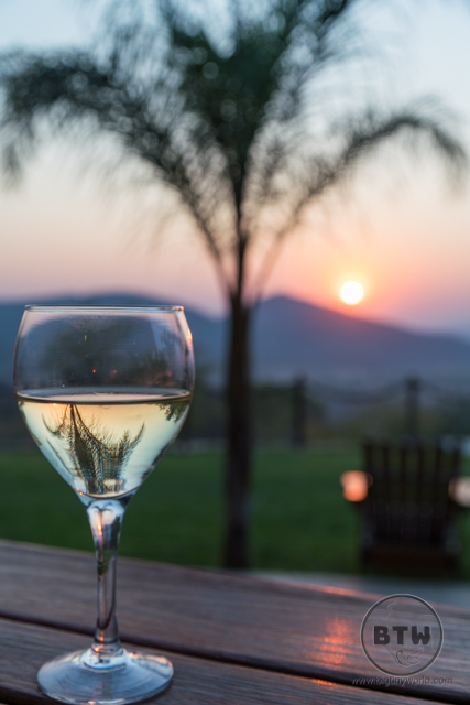 Wine in front of a palm tree and sunset in Namibia