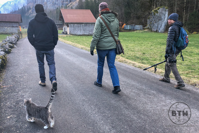 Aaron walking with friends in Switzerland, as a cat follows behind
