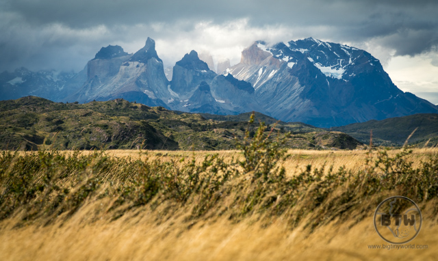 Wind blowing through the grains in Torres del Paine National Park in Chile