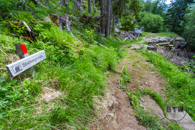 """A sign that reads """"Strekegrova"""" along the Losta Trail in Norway 