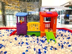 Giant Ball Pit Rental
