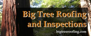 Big Tree Roofing