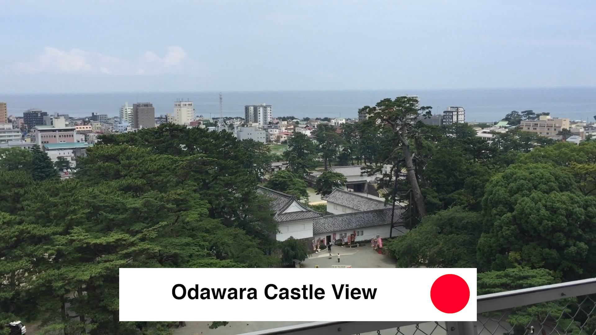 Odawara Castle View - Odawara Castle Japan Guide Review Video - 9 Reasons To See Odawara Castle Kanagawa Japan 🇯🇵 🏯 🌸