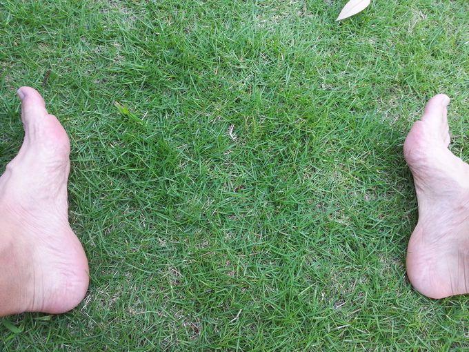 芝生で裸足が気持ち良い