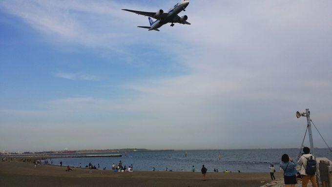 城南島海浜公園 つばさ浜と飛行機