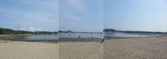 2019年6月6日 海の公園の全景