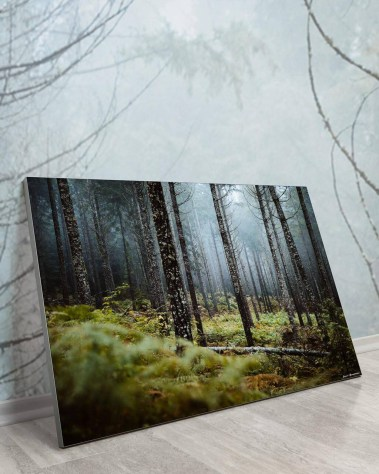 Big Biggest Massive Huge Large Largest Giant Gigantic Wall Décor Art Backlit Fabric Home Deco Artwork Artist Jared Gunderson Landscape Scenic Photography Instagram Trees Nature Forest Fog Moss