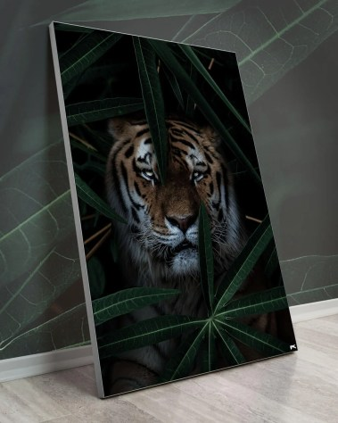 Big Jungle Tiger Animal Nature Wall Art Decor