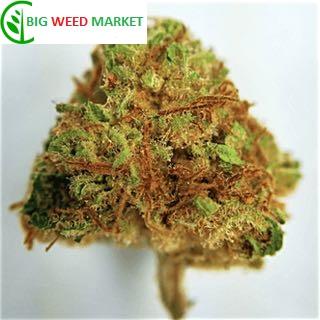 Buy Harlequin CBD Marijuana Online Moldova
