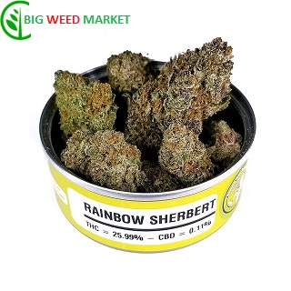 Buy Rainbow Sherbert Weed Can Online Hungary