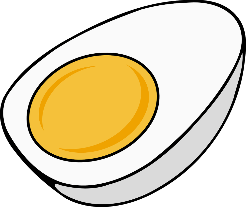 fake eggs, how to spot