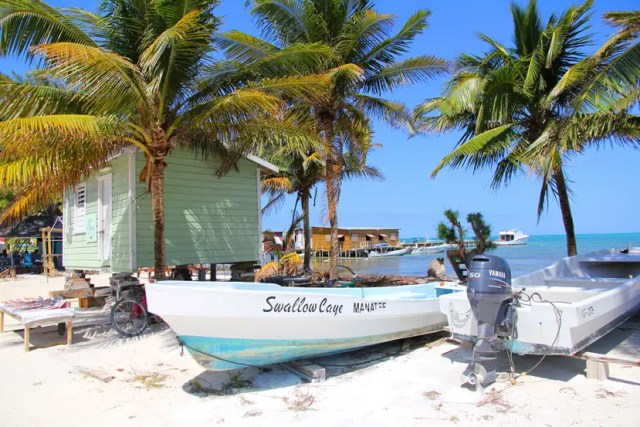 things to do caye caulker belize