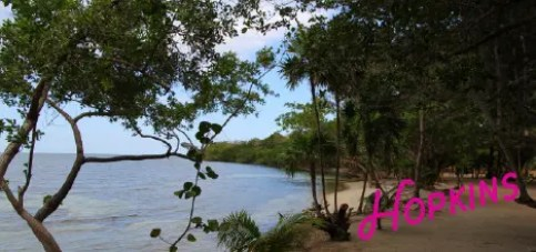 hopkins belize things to do
