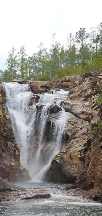 mountain pine ridge forest reserve