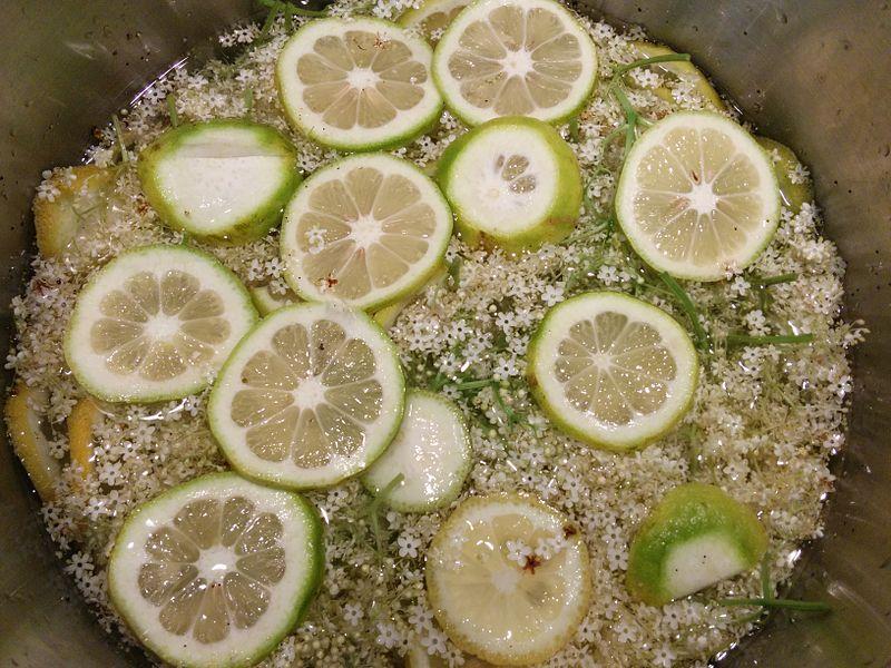 Цветы бузины и лимоны залить водой. Фото: Thomas Springer, CC-Zero