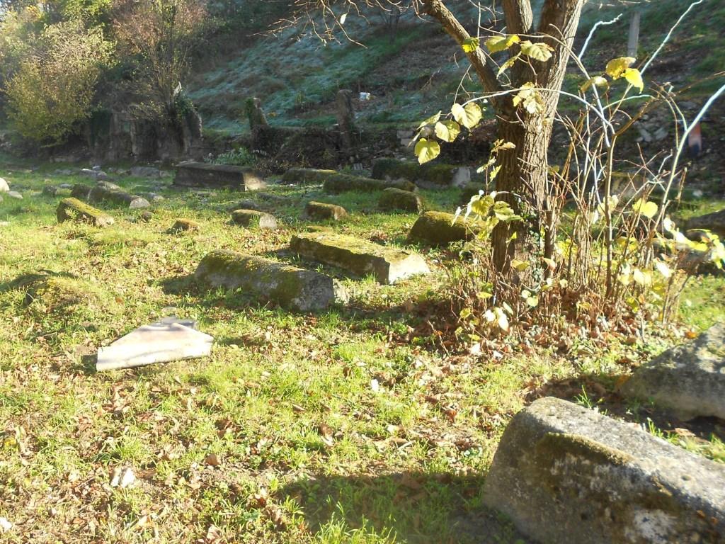 Говорят, что ольху посадили при основании кладбища