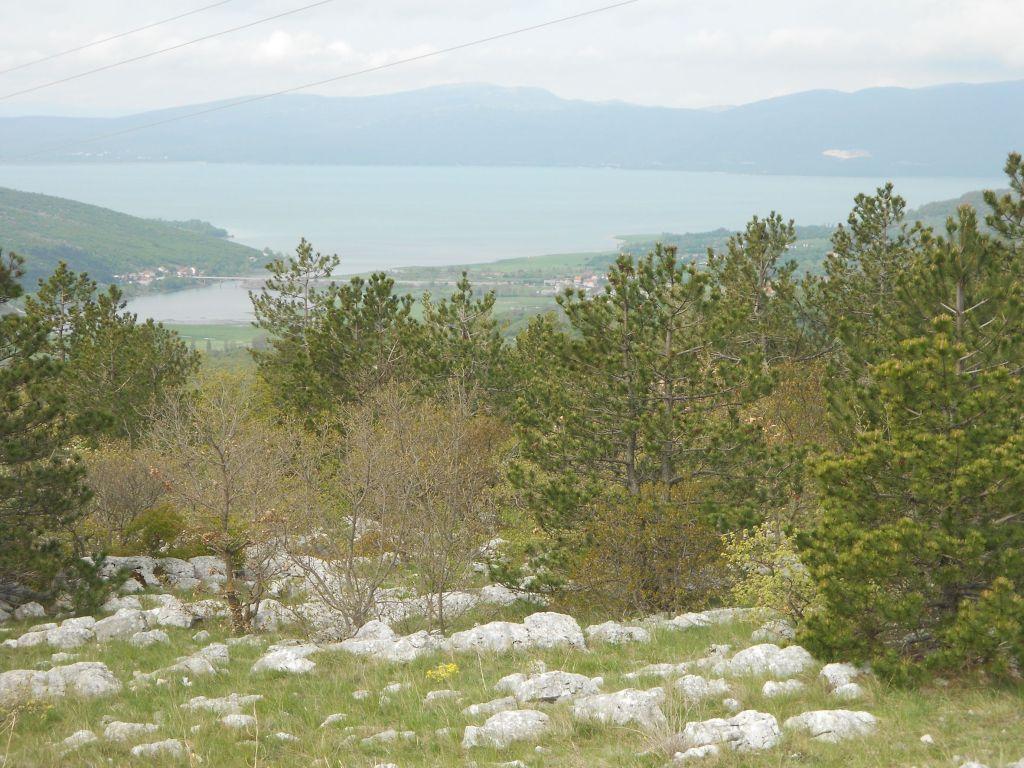 Вид на озеро. Фото: Елена Арсениевич, CC BY-SA 3.0