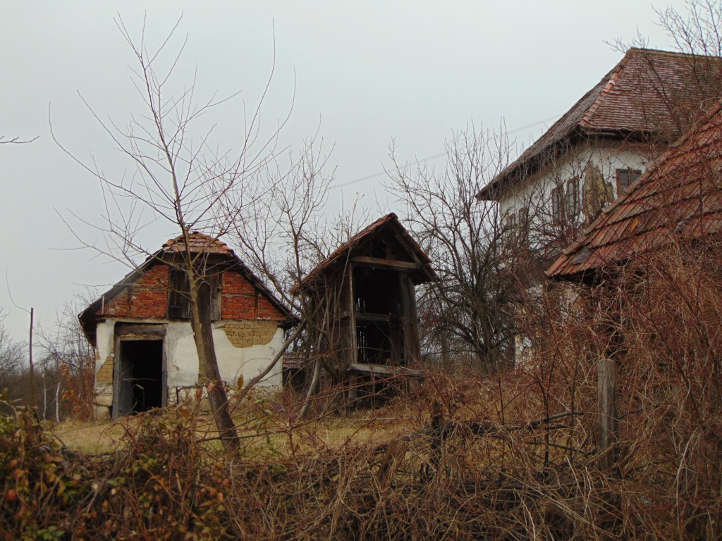 Дом и хозяйство. Фото: Елена Арсениевич, CC BY-SA 3.0